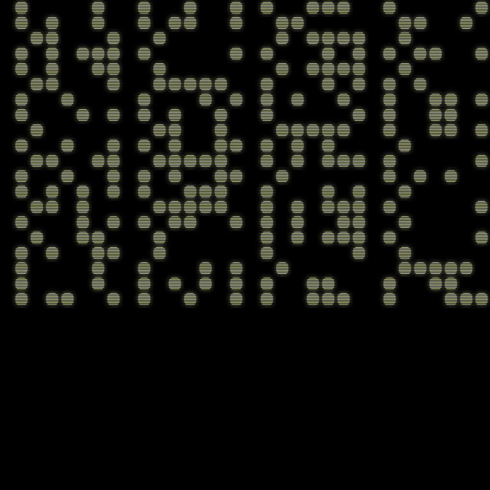 binary021